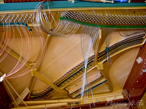Новое пианино «Моцарт»