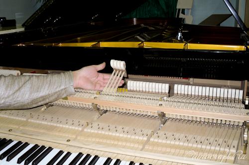 Молотки рояля – самое дорогое, что есть в механике
